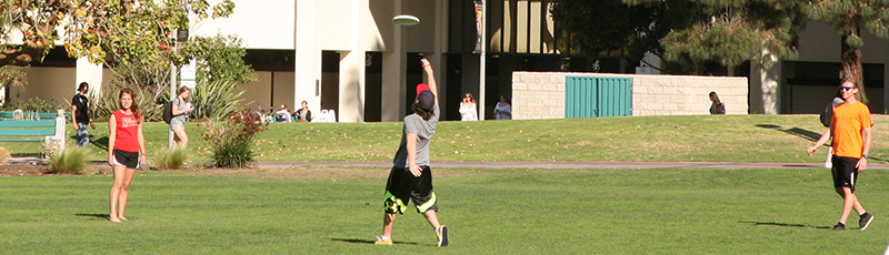 students playing frisbee on campus lawn